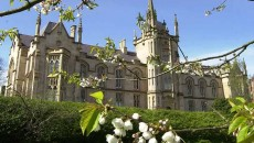 Magee-and-branches