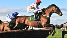 horse-mid-jump-pe